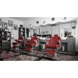 Πολυθρόνα Barber Lenny full color